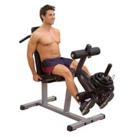 BODYSOLID Leg Curl / Extension LCE365